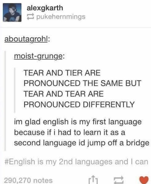 Text - alexgkarth pukehernmings aboutagrohl: moist-grunge: TEAR AND TIER ARE PRONOUNCED THE SAME BUT TEAR AND TEAR ARE PRONOUNCED DIFFERENTLY im glad english is my first language because if i had to learn it as a second language id jump off a bridge #English is my 2nd languages and I can 290,270 notes
