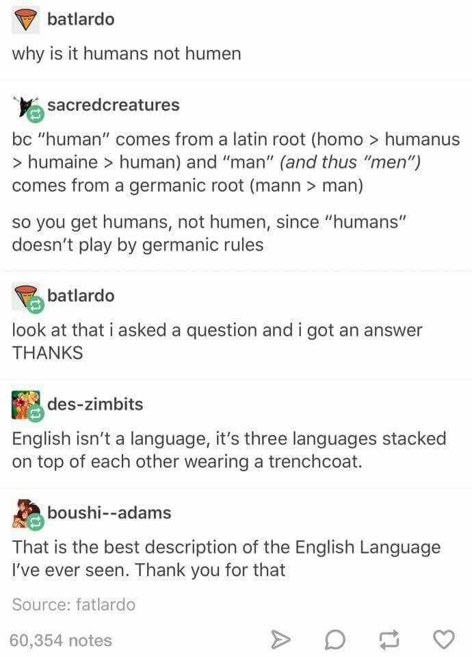 "Text - batlardo why is it humans not humen sacredcreatures bc ""human"" comes from a latin root (homo > humanus > humaine human) and ""man"" (and thus ""men"") comes from a germanic root (mann > man) so you get humans, not humen, since ""humans"" doesn't play by germanic rules batlardo look at that i asked a question and i got an answer THANKS des-zimbits English isn't a language, it's three languages stacked on top of each other wearing a trenchcoat. boushi--adams That is the best description of the En"