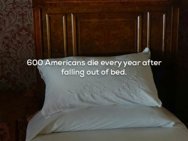 Bedding - 600 Americans die every year after falling out of bed.