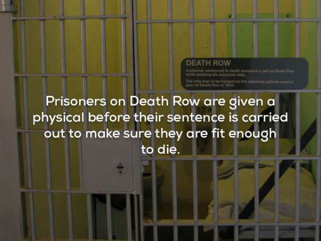 Animal shelter - DEATH ROW Aprisn le de occusisd e Prisoners on Death Row are given a physical before their sentence is carried out to make sure they are fit enough to die.