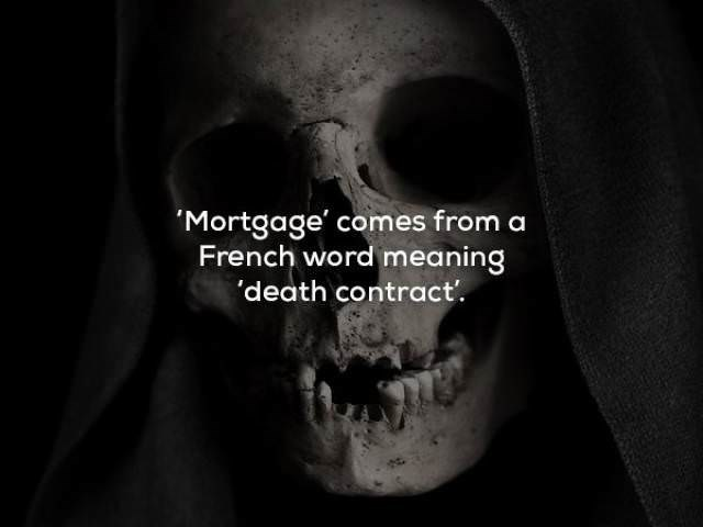 Mouth - 'Mortgage' comes from a French word meaning 'death contract.