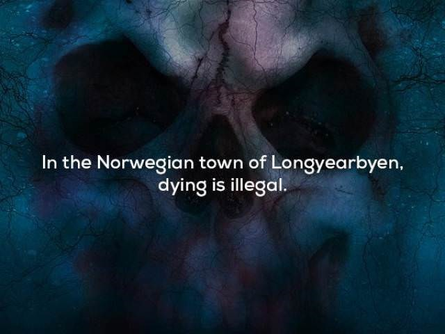 Text - In the Norwegian town of Longyearbyen, dying is illegal.