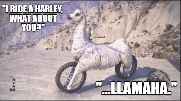 llama motorcycle hybrid of some sort