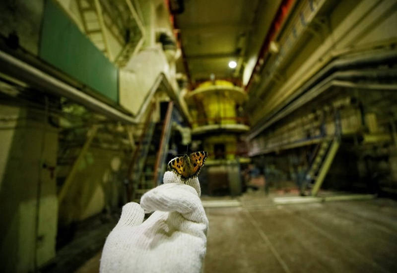 Chernobyl visitor holds a butterfly that landed on his room in the third reactor