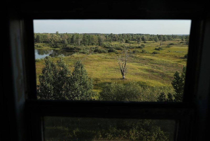 Chernobyl train for workers offers view of the marshland near Slavutych Ukraine in 2017