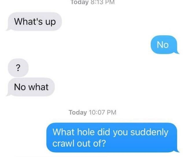 Text - Today 8:13 PM. What's up No ? No what Today 10:07 PM What hole did you suddenly crawl out of?