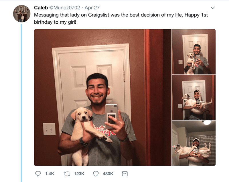 Photograph - Caleb @Munoz0702 Apr 27 Messaging that lady on birthday to my girl! Craigslist was the best decision of my life. Happy 1st corg 123K 480K 1.4K