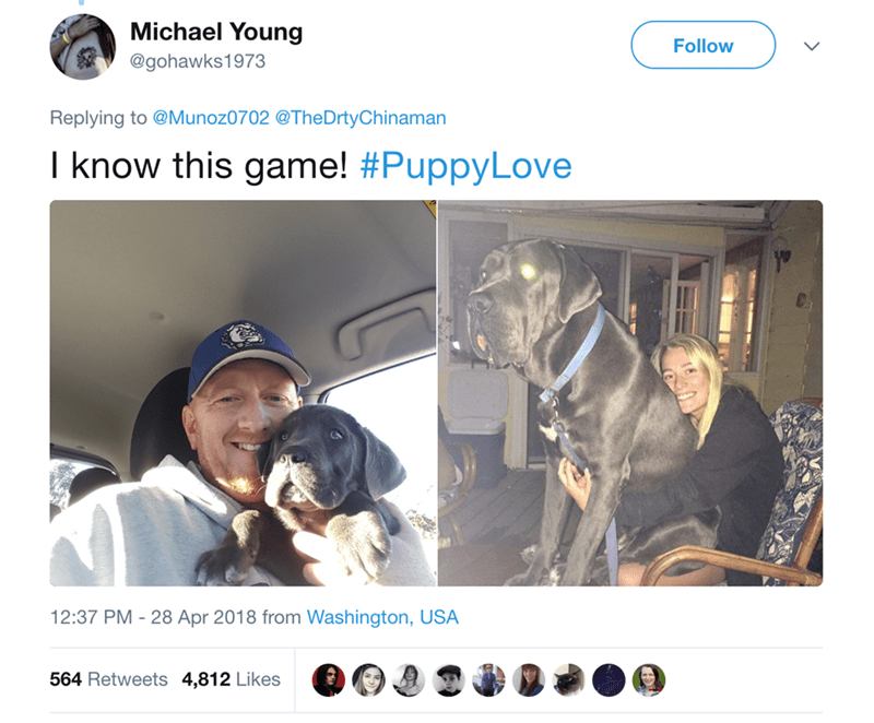 Canidae - Michael Young Follow @gohawks1973 Replying to @Munoz0702 @TheDrtyChinaman I know this game! #PuppyLove 12:37 PM 28 Apr 2018 from Washington, USA 564 Retweets 4,812 Likes