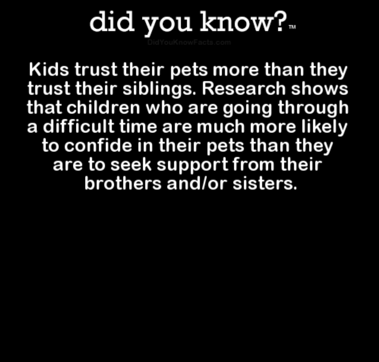 Text - did you know?. DidYouknowFacta.com Kids trust their pets more than they trust their siblings. Research shows that children who are going through a difficult time are much more likely to confide in their pets than they are to seek support from their brothers and/or sisters.