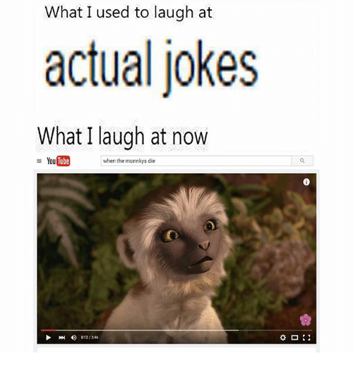 Wildlife - What I used to laugh at actual jokes What I laugh at now YouTube when the monnkys die 012/346