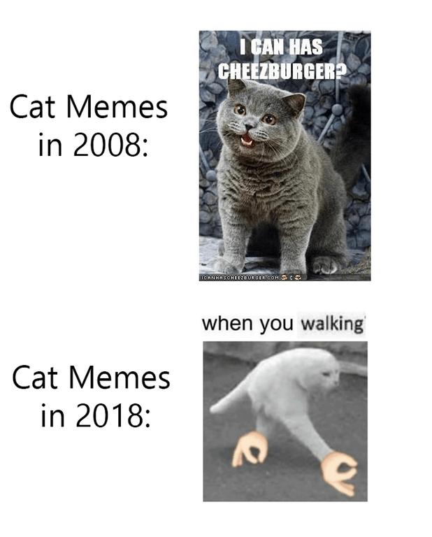 Cat - TCAN HAS CHEEZBURGER Cat Memes in 2008: nCANHASOHEE20URGER COM when you walking Cat Memes in 2018: