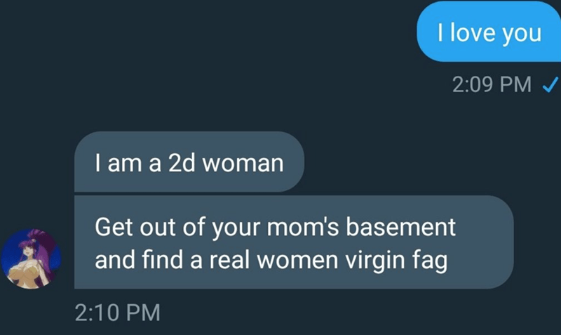 Text - I love you 2:09 PM I am a 2d woman Get out of your mom's basement and find a real women virgin fag 2:10 PM