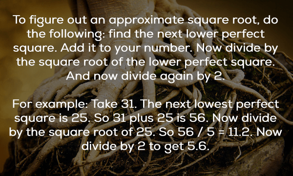 Text - To figure out an approximate square root, do the following: find the next lower perfect square. Add it to your number. Now divide by the square root of the lower perfect square. And now divide again by 2. For example: Take 31. The next lowest perfect square is 25, So 31 plus 25 is 56. Now divide by the square root of 25. So 56/5 11.2. Now divide by 2 to get 5.6.