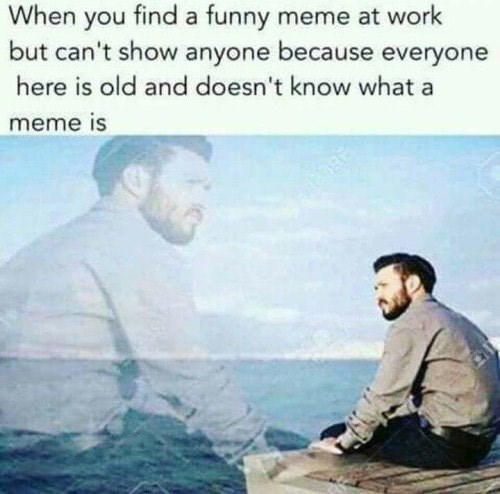 Guy wanting to show memes to his coworkers who are too old to know what memes are