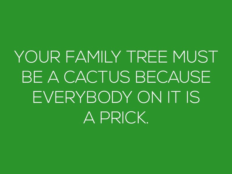 """Your family tree must be a cactus because everybody on it is a prick"""