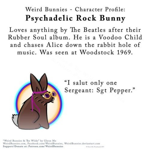 "Text - Weird Bunnies Character Profile Psychadelic Rock Bunny Loves anything by The Beatles after their Rubber Soul album. He is a Voodoo Child and chases Alice down the rabbit hole of music. Was seen at Woodstock 1969 ""I salut only one Sergeant: Sgt Pepper."" Weird Bunnies & The Wilds"" by Glynn Mo WeirdBunnies.com, Facebook.com/WeirdBunnies, WeirdBunnies.deviantart.com Support/Donate at: Patreon.com/WeirdBunnies"