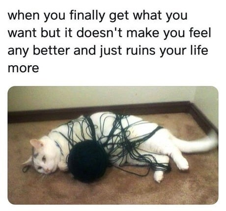 cat meme - Photo caption - when you finally get what you want but it doesn't make you feel any better and just ruins your life more