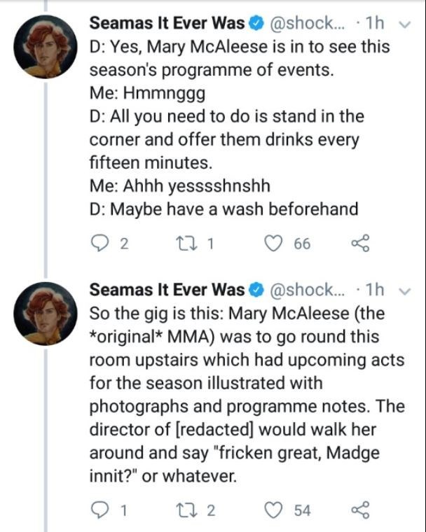 Text - Seamas It Ever Was@shock... 1h D: Yes, Mary McAleese is in to see this season's programme of events. Me: Hmmnggg D: All you need to do is stand in the corner and offer them drinks every fifteen minutes. Me: Ahhh yesssshnshh D: Maybe have a wash beforehand 2 66 Seamas It Ever Was@shock... 1h So the gig is this: Mary McAleese (the original MMA) was to go round this room upstairs which had upcoming acts for the season illustrated with photographs and programme notes. The director of [redacte