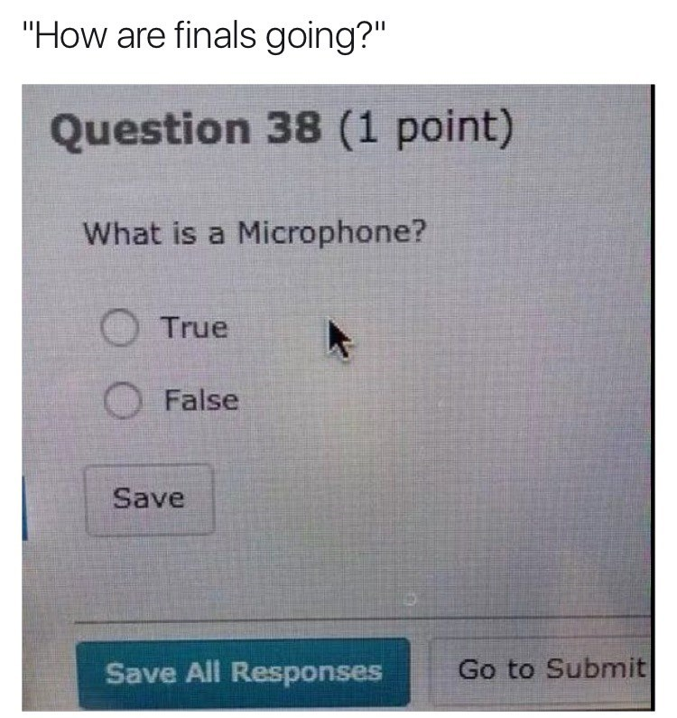 """Text - """"How are finals going?"""" Question 38 (1 point) What is a Microphone? True False Save Go to Submit Save All Responses"""