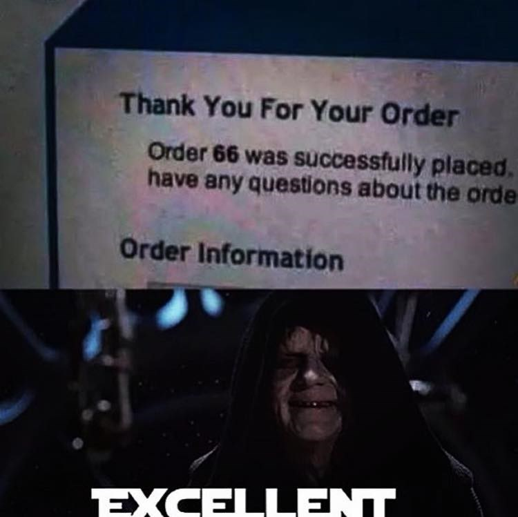 Text - Thank You For Your Order Order 66 was successfully placed. have any questions about the orde Order Information EXCELLENT