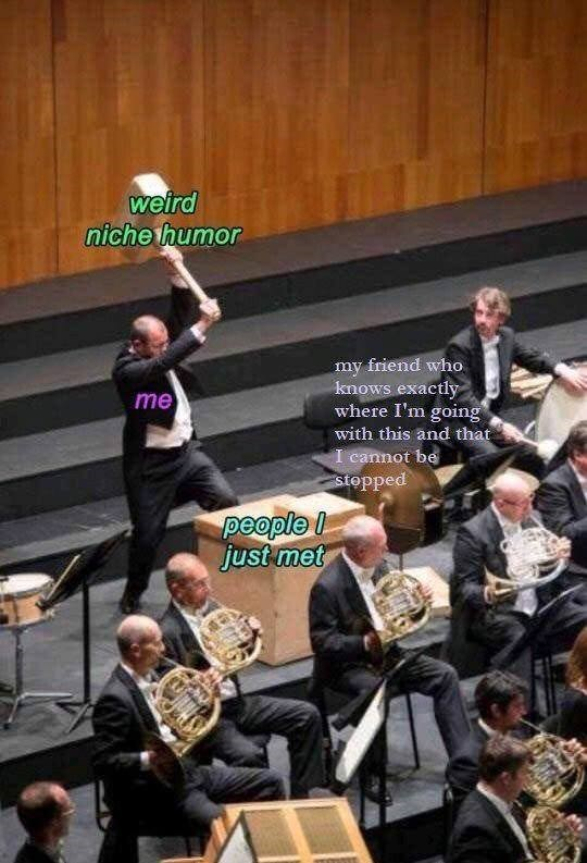 Orchestra - weird niche thumor my friend who knows exactly where I'm going with this and that I cannot be stopped me people just met