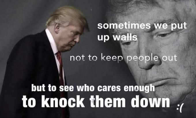 Dank meme of an ironic inspirational quote by Donald Trump about building walls to not keep people out but to see who cares enough to knock them down