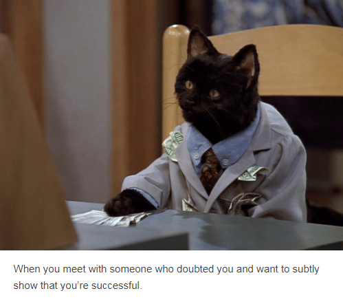 salem cat wearing suit putting money on table When you meet with someone who doubted you and want to subtly show that you're successful.