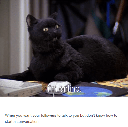 salem in front of computer and mouse When you want your followers to talk to you but don't know how to start a conversation