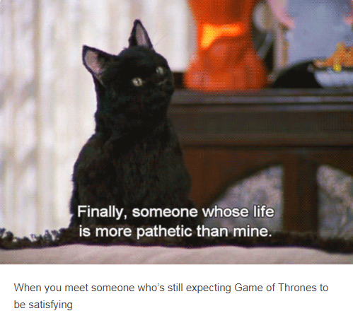 salem cat - Finally, someone whose life is more pathetic than mine. When you meet someone who's still expecting Game of Thrones to be satisfying