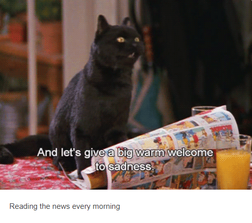 salem cat with newspaper And let's give a big warm welcome to sadness Reading the news every morning