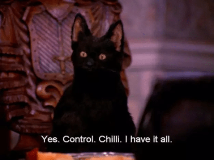 salem cat yes control chilli i have it all