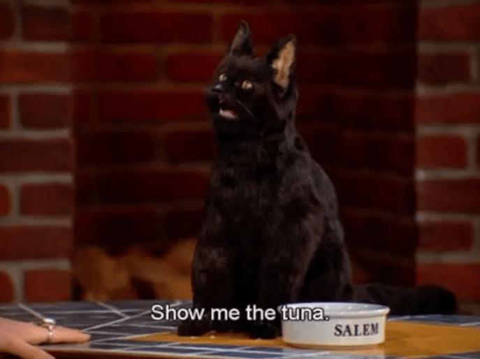 salem cat with food bowl Show me the tuna.