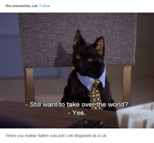 salem wearing tie still want to take over the world yes