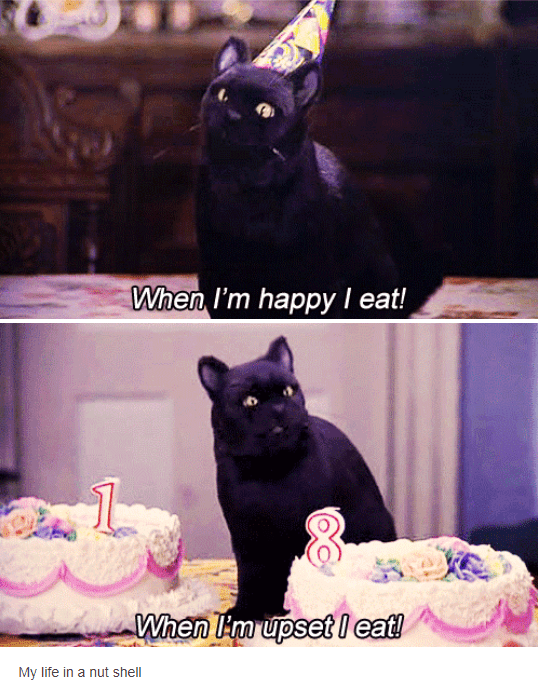 salem cat wearing birthday hat in front of cakes when im happy and sad i eat