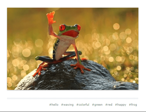 cute waving animals - Frog - #hello #waving #colorful #green #red #happy #frog