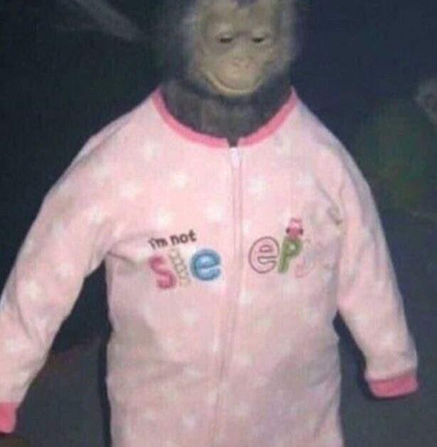 cursed images - Outerwear - not Se e DIA
