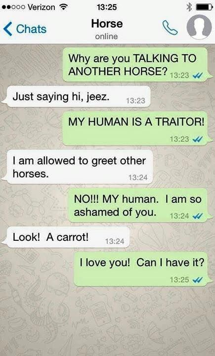 horse chat - Text - ooo Verizon 13:25 Horse < Chats online Why are you TALKING TO ANOTHER HORSE? 13:23 Just saying hi, jeez 13:23 MY HUMAN IS A TRAITOR! 13:23 I am allowed to greet other horses. 13:24 NO!!! MY human. I am so ashamed of you. 13:24 Look! A carrot! 13:24 I love you! Can I have it? 13:25