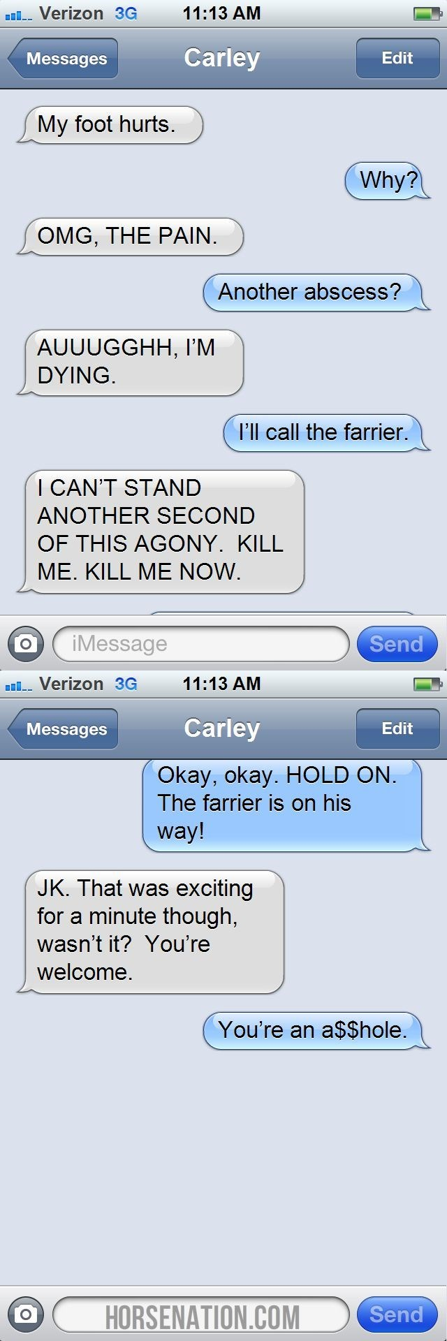 horse chat - Text - 11:13 AM Verizon 3G Carley Edit Messages My foot hurts. Why? OMG, THE PAIN. Another abscess? AUUUGGHH, I'M DYING. I'll call the farrier. I CAN'T STAND ANOTHER SECOND OF THIS AGONY. KILL ME. KILL ME NOW Send iMessage Verizon 3G 11:13 AM Carley Messages Edit Okay, okay. HOLD ON. The farrier is on his way! JK. That was exciting for a minute though, wasn't it? You're welcome. You're an a$$hole. Send HORSENATION.COM