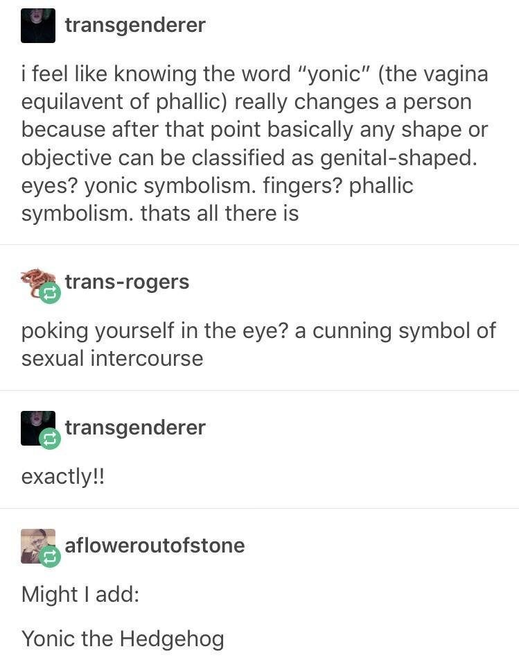 """Text - transgenderer i feel like knowing the word """"yonic"""" (the vagina equilavent of phallic) really changes a person because after that point basically any shape or objective can be classified as genital-shaped. eyes? yonic symbolism. fingers? phallic symbolism. thats all there is trans-rogers poking yourself in the eye? a cunning symbol of sexual intercourse transgenderer exactly!! afloweroutofstone Might I add: Yonic the Hedgehog"""