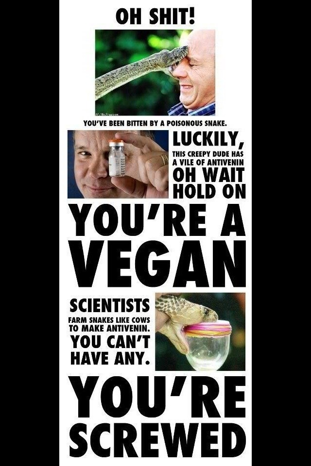 meme about vegans not being able to use medications made from animal products