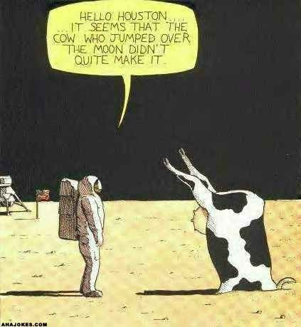 cow webcomics - Cartoon - HELLO HOUSTON IT SEEMS THAT THE COW WHO JUMPED OVER THE MOON DIDNT QUITE MAKE IT AHAJOKES.COM