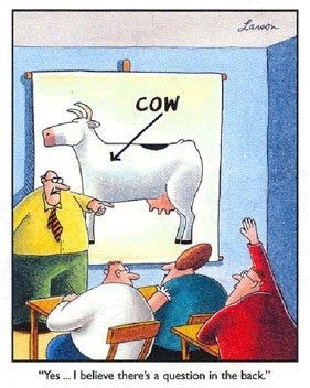 "cow webcomics - Cartoon - aen COW ""Yes..I believe there's a question in the back"