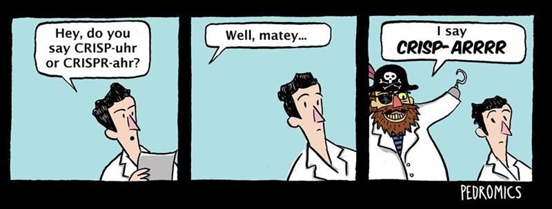 Cartoon - say CRISP-ARRRR Hey, do you say CRISP-uhr or CRISPR-ahr? Well, matey... PEDROMICS
