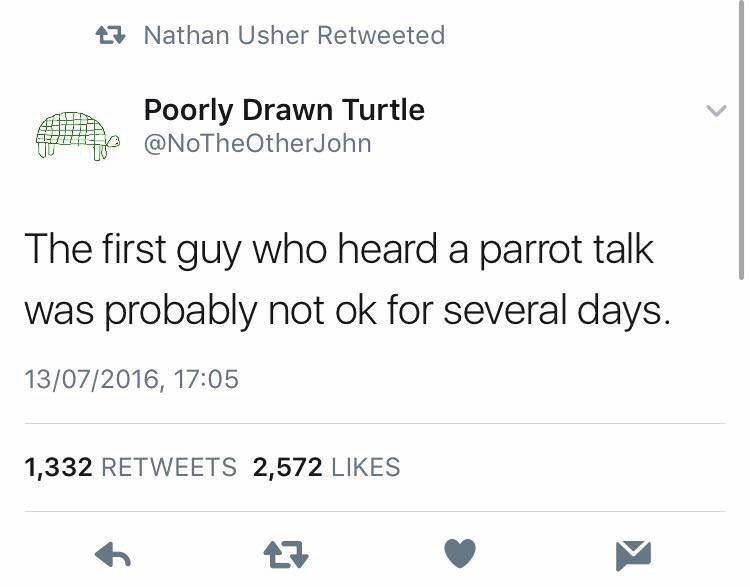 Text - Nathan Usher Retweeted Poorly Drawn Turtle @NoTheOtherJohn The first guy who heard a parrot talk was probably not ok for several days. 13/07/2016, 17:05 1,332 RETWEETS 2,572 LIKES