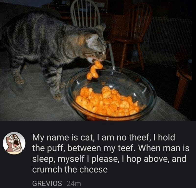 Junk food - My name is cat, I am no theef, I hold the puff, between my teef. When man is sleep, myself I please, I hop above, and crumch the cheese GREVIOS 24m