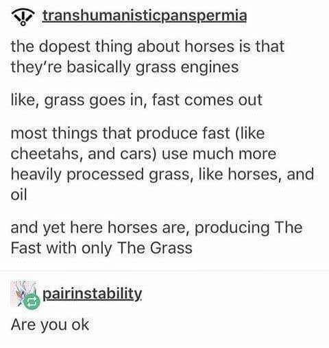 Text - anshumanisticpanspermia the dopest thing about horses is that they're basically grass engines like, grass goes in, fast comes out most things that produce fast (like cheetahs, and cars) use much more heavily processed grass, like horses, and oil and yet here horses are, producing The Fast with only The Grass pairinstability Are you ok