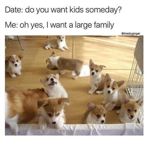 Vertebrate - Date: do you want kids someday? Me: oh yes, I want a large family @thedryginger