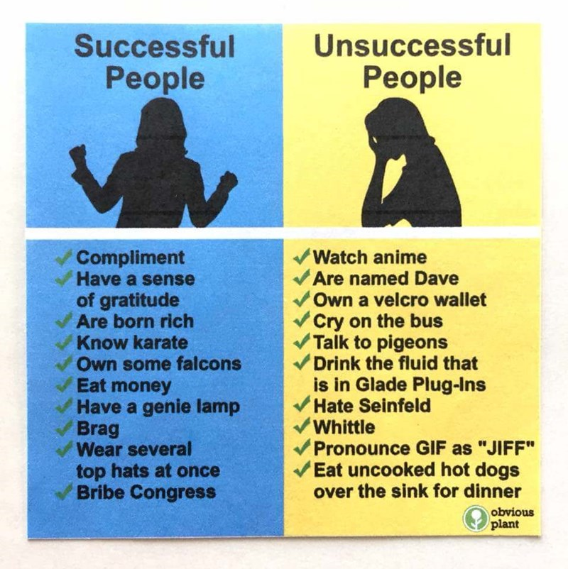 """Text - Unsuccessful People Successful People Compliment Have a sense of gratitude Are born rich Know karate Own some falcons Eat money Have a genie lamp Brag Wear several top hats at once Bribe Congress Watch anime Are named Dave Own a velcro wallet Cry on the bus Talk to pigeons Drink the fluid that is in Glade Plug-Ins Hate Seinfeld Whittle Pronounce GIF as """"JIFF"""" Eat uncooked hot dogs over the sink for dinner obvious plant"""