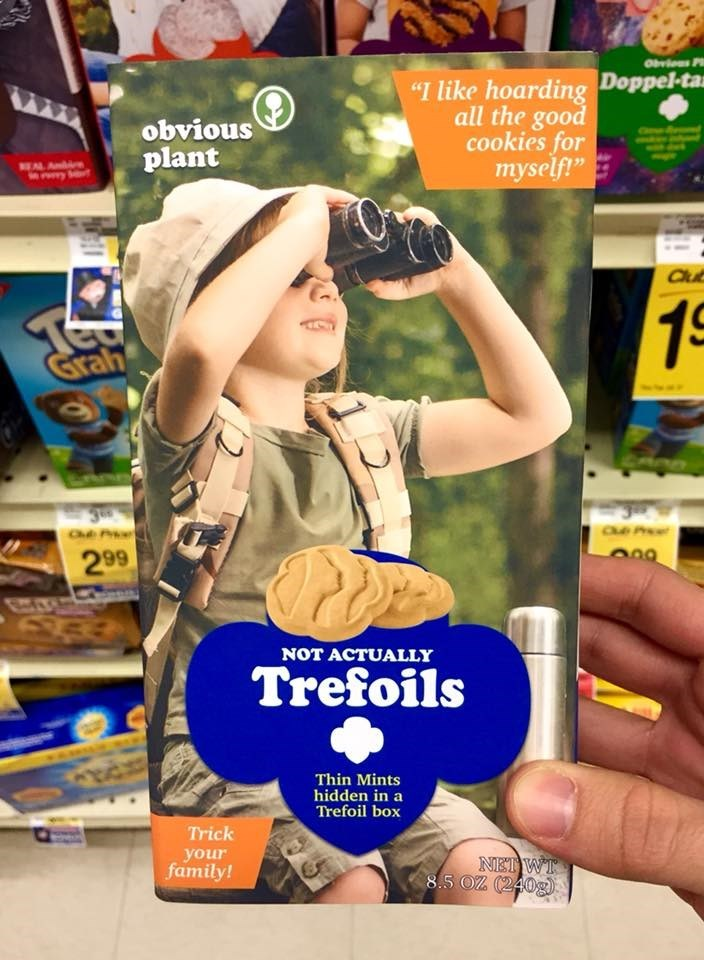 """Advertising - """"I like hoarding Doppel-ta all the good cookies for myself"""" obvious plant NEAL A e yt Clu 1S Grah 299 NOT ACTUALLY Trefoils Thin Mints hidden in a Trefoil box Trick your family! NET WT 8.5 OZ (240g"""