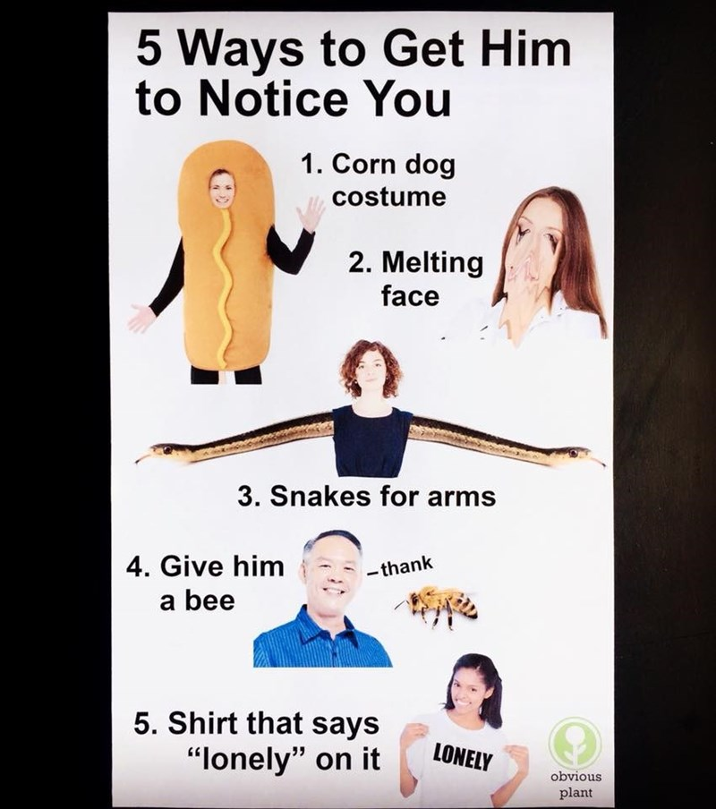 """Text - 5 Ways to Get Him to Notice You 1. Corn dog costume 2. Melting face 3. Snakes for arms 4. Give him -thank a bee 5. Shirt that says LONELY """"lonely"""" on it obvious plant"""